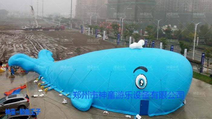 鲸鱼岛乐园房地产活动游乐项目